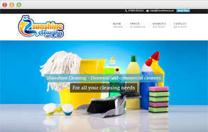 cleaners website